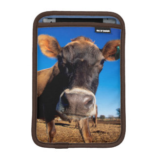 A Jersey cow being inquisitive Sleeve For iPad Mini