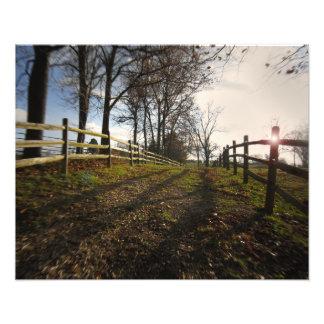 A Jog Down a Country Path Photo Print