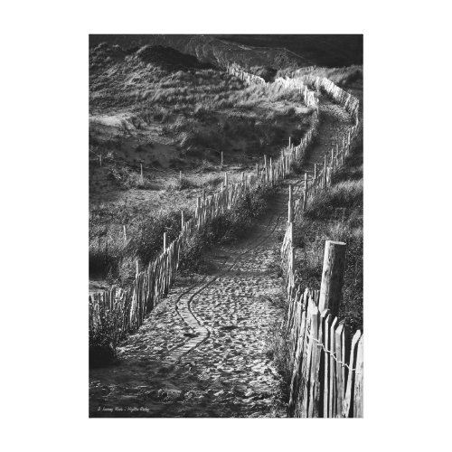 A Journey Made, fine art black and white Canvas Print