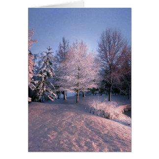 A Joyful Christmas Season (card) Card