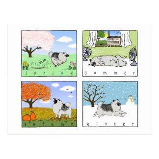 A Keeshond Enjoys the Four Seasons - Fun Dog Art Postcard