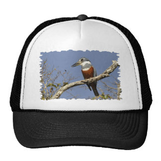 A Kingfisher Perches in a branch of a Tree Trucker Hat