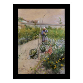 A Kitchen Garden Postcard