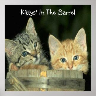a, Kittys en el barril Póster