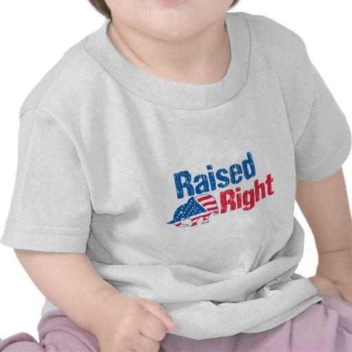 A la derecha criado - republicano camisetas