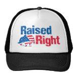 A la derecha criado - republicano gorra