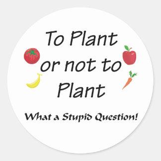 A la planta o no plantar etiquetas redondas
