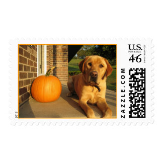 A Lab Halloween Postage Stamp