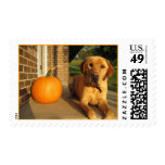 A Lab Halloween Postage Stamp