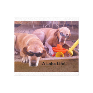 A Labs Life Gallery Wrapped Canvas
