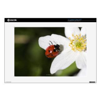 "A ladybird on a wood anemone Stockholm Sweden 15"" Laptop Skin"