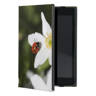 A ladybird on a wood anemone Stockholm Sweden Cover For iPad Mini