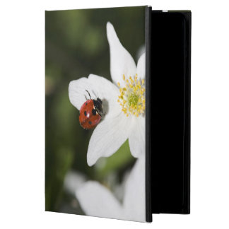 A ladybird on a wood anemone Stockholm Sweden iPad Air Covers