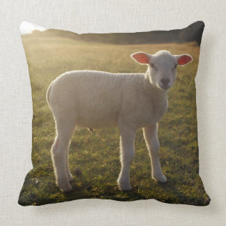 A Lamb at the Setting of the Sun Sweden Throw Pillow