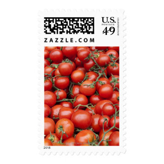 A large crop of tomato on a market stall in stamps