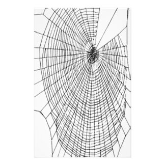 A Large Illustration Of A Spider's Web Stationery