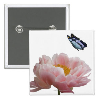 a large pink peony is visited by a ethereal 2 inch square button