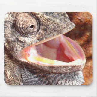 A Laughing Chameleon Mouse Pad