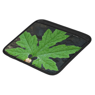 A Leaf Of A Bitter Melon Sleeves For iPads