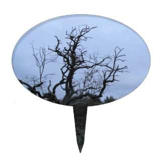 A leafless tree at dusk cake topper