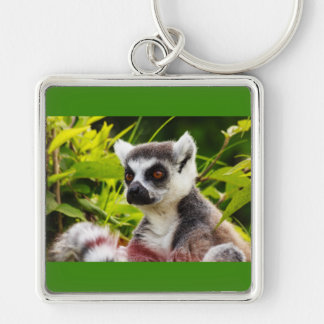 a lemur of madagascar on Premium Square Keychain