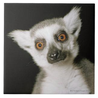 A lemur. tile