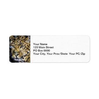 A Leopard's Eyes Return Address Label