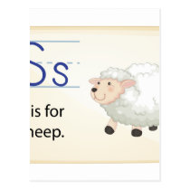 A letter S for sheep Postcard