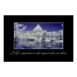 A Life s Importance is the Impact it Has Poster