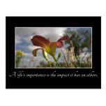 A Life's Importance is the Impact it Has on Others Postcard