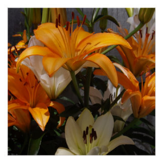 A Lily Bouquet Poster