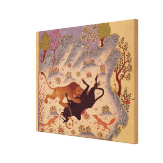 A Lion Attacking and Killing a Bull Stretched Canvas Prints