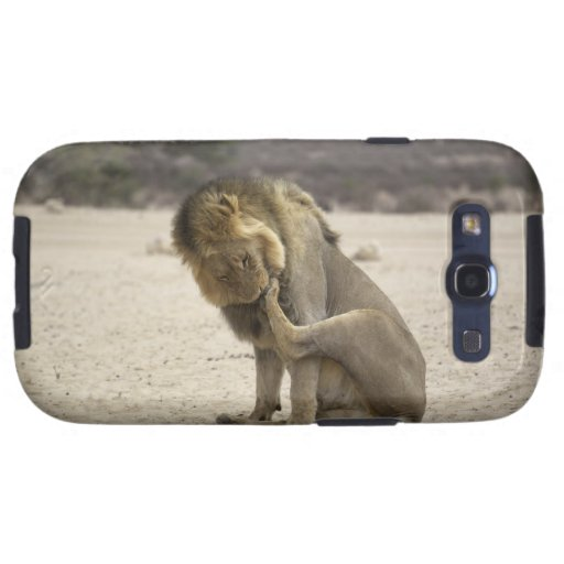 A Lion cleaning its back paw, Kgalagadi Galaxy SIII Cases