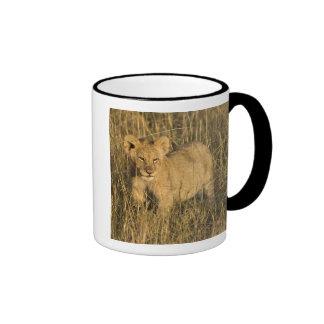 A lion cub laying in the bush in the Maasai Mara Ringer Mug