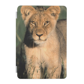 A Lion cub observes the camera from the long grass iPad Mini Cover