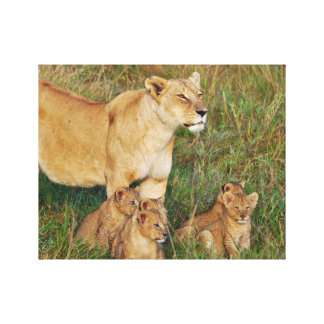 A Lioness and Her Cubs Canvas Print