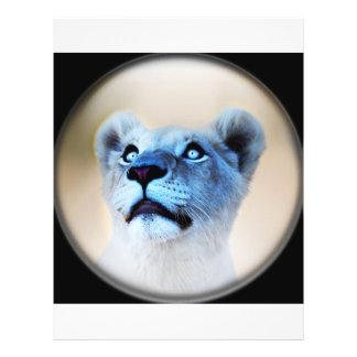 A lions surprise flyer