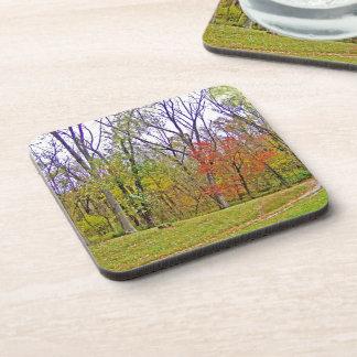 A Little Autumn Hike Drink Coaster
