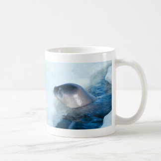 A little baby seal coffee mug