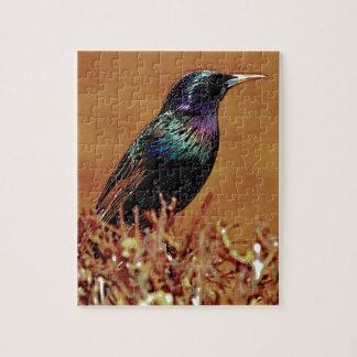A Little Bird Told Me Starling Bird Photograph Jigsaw Puzzles