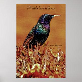 A Little Bird Told Me Starling Bird Print