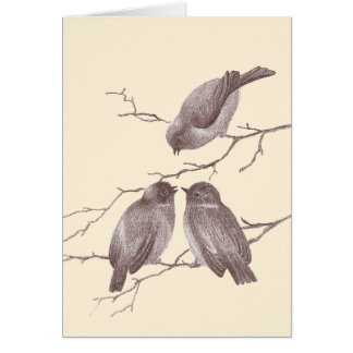 A Little Bird Told Me: Winter Birds Antique Sketch Cards