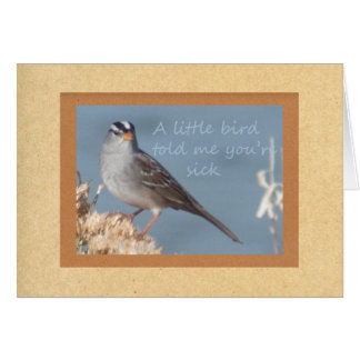 A Little Bird Told Me You Were Sick Card