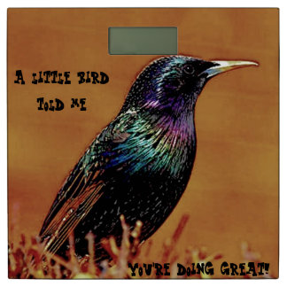 A Little Bird Told Me You're Doing Great Bathroom Scale