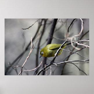 A little Bird Whispered In My Ear Print