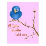 A Little Birdie Momism Postcard