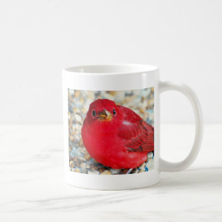 A Little Birdie Told Me Classic White Coffee Mug