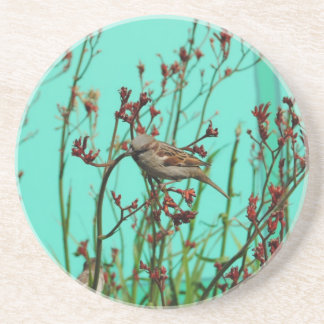 A Little Birdie Told Me Coasters