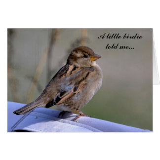 """""""A little birdie told me..."""" greeting card"""