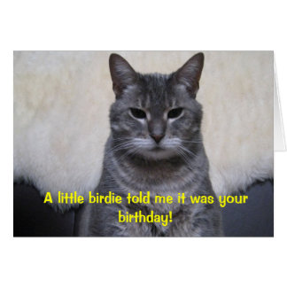 A little birdie told me it was your Birthday... Greeting Card